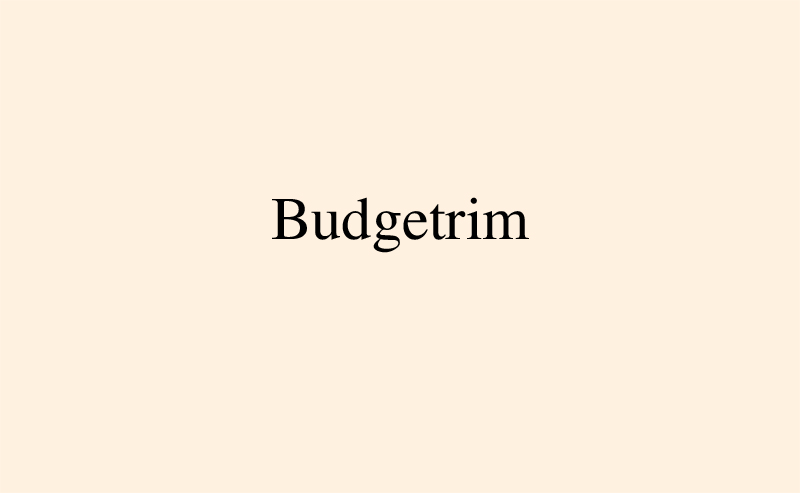 http://nikolai-ishchuk.com/files/gimgs/th-14_N_Ishchuk-IdiomForEcon-Budgetrim.jpg