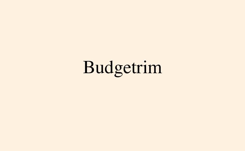 https://nikolai-ishchuk.com:443/files/gimgs/th-14_N_Ishchuk-IdiomForEcon-Budgetrim.jpg